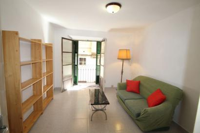 Old Town Furnished one bedroom apartment in La Lonja area