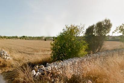 Land property to renovate with a mill in the colony of San Jordi