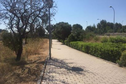 Solar edificable de 14500 m² en zona Festival Park, Marratxi