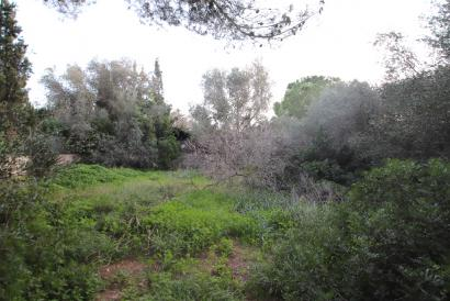 Urban building plot up to 5 townhouses, 15 minutes from Palma, Las Palmeras